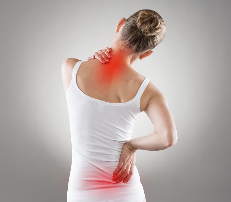 chiropractic services  Jacksonville, FL